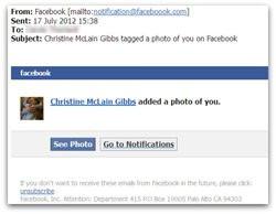 00FA000005309424-photo-facebook-malware-email.jpg