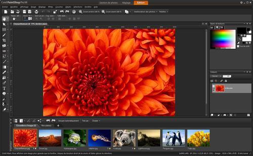 01F4000004565188-photo-paint-shop-pro-x4.jpg