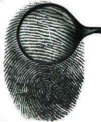 00c8000000129579-photo-identit-et-identification.jpg