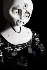000000F002045398-photo-mit-robot.jpg