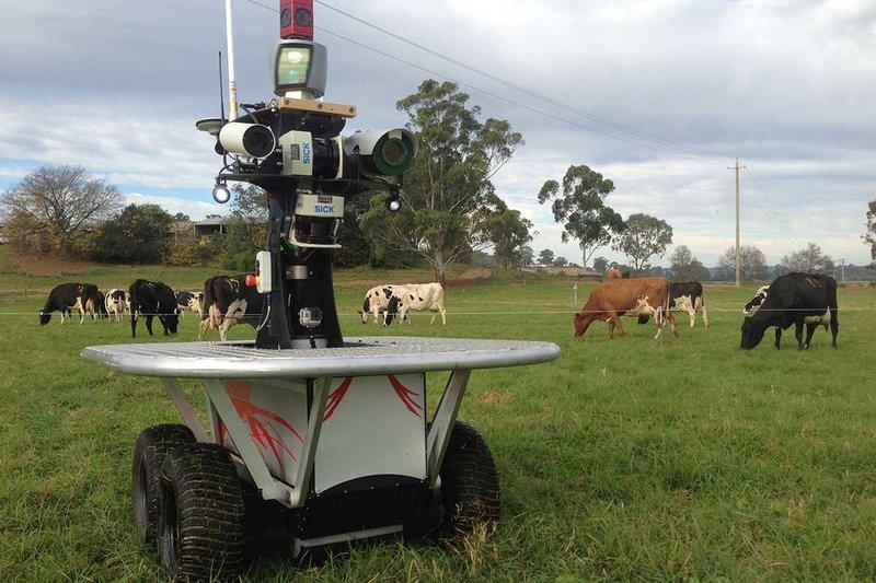 0320000008456630-photo-robot-berger-australie.jpg