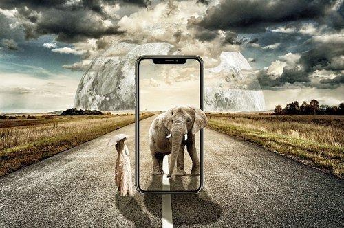 01f4000008791894-photo-ecran-elephant.jpg