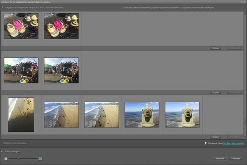 01f4000005020814-photo-photoshop-elements-10-organiseur-recherche-de-doublons.jpg