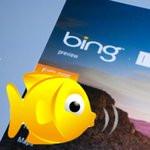 0096000005206518-photo-bing-babel-fish.jpg