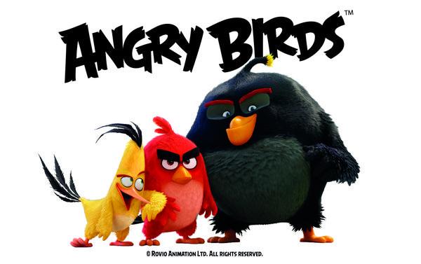 0258000008451134-photo-angry-birds-le-film.jpg