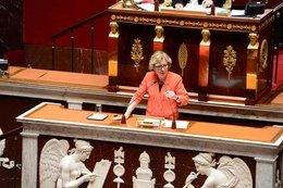 0104000006115188-photo-genevi-ve-fioraso-ministre-de-l-enseignement-sup-rieur.jpg