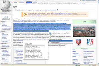015e000001952816-photo-comment-traduire-une-page-web.jpg