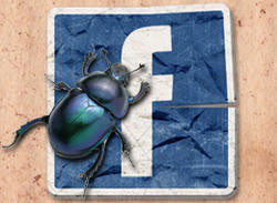 00FA000003240662-photo-facebook-bug.jpg