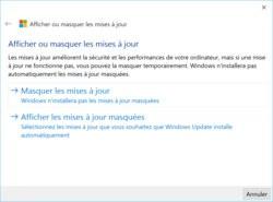 00FA000008121196-photo-windows-10-afficher-ou-masquer-les-mises-jour.jpg