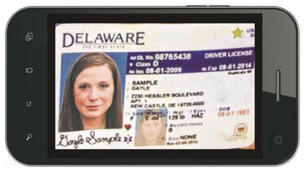07879891-photo-permis-de-conduire-delaware.jpg