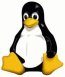 0082000000092171-photo-linux-tux-logo-officiel.jpg