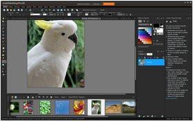 0118000008525432-photo-corel-paintshop-pro-x9-1.jpg
