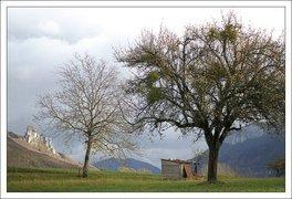 000000b400426668-photo-carte-voeux-paysage.jpg