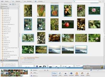 015e000000415105-photo-carte-voeux-picasa.jpg