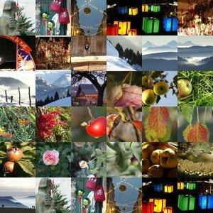 012c000000415122-photo-carte-voeux-picasa-mosaique.jpg