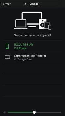 0000019008216544-photo-spotify-sur-chromecast.jpg