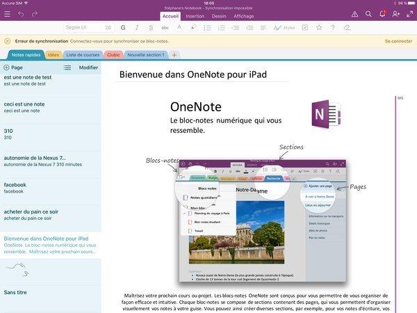 0258000008578248-photo-onenote-ipad-pro.jpg