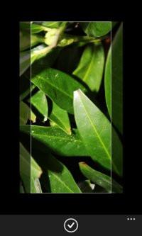00C8000007442727-photo-windows-phone-8-1.jpg