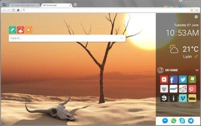 0190000008464580-photo-ur-browser.jpg