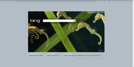 0000011802113314-photo-microsoft-bing.jpg