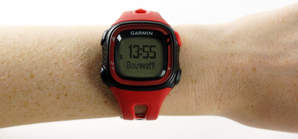 03D4000007611485-photo-garmin-forerunner-15.jpg