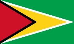 00f0000006989162-photo-drapeau-de-guyana.jpg