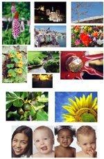 0096000000053027-photo-page-de-test-imprimante-photo.jpg