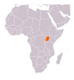 0104000007367381-photo-orange-ouganda.jpg