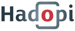 02723656-photo-logo-hadopi-sans-texte.jpg