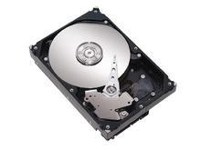 00DC000001777300-photo-disque-dur-seagate-barracuda-160-go-7200-10-plus-sata-ii-2mo-st3160215as.jpg