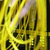 0064000005206162-photo-jaune.jpg