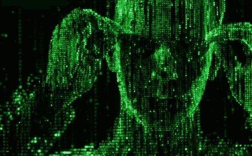 01f4000008321390-photo-matrix-ascii.jpg