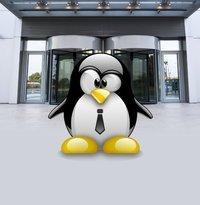 00c8000005726228-photo-logo-tux-open-source-entreprise.jpg