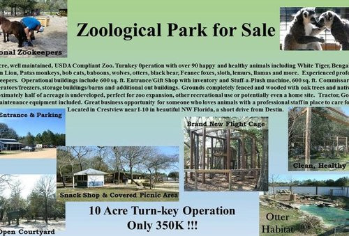 01F4000008697444-photo-emerald-coast-wildlife-refuge-zoological-park-zoo.jpg