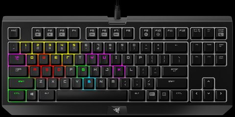 01E0000008012924-photo-razer-blackwidow-tournament-edition-chroma.jpg
