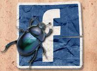 00C8000003240662-photo-facebook-bug.jpg