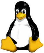 0096000000511897-photo-manchot-linux-logiciel-libre-open-source.jpg