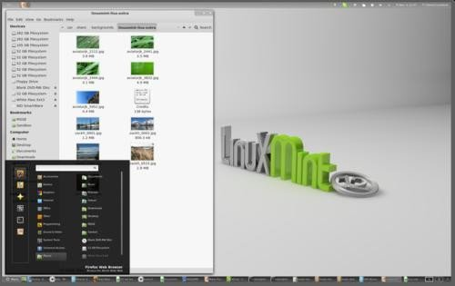 01f4000004733188-photo-linux-mint-12.jpg