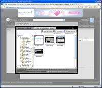 00c8000000429600-photo-captures-windows-live-spaces-images-ie.jpg