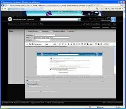 00fa000000429603-photo-captures-windows-live-spaces-images-ie.jpg