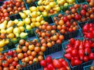 0000006400560660-photo-fruits-l-gumes.jpg
