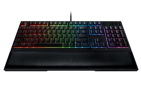 0226000008539334-photo-razer-ornata.jpg