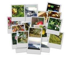 00fa000000415123-photo-carte-voeux-picasa-pile-de-photos.jpg