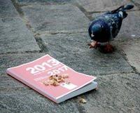 00C8000005485603-photo-pigeon-plf.jpg