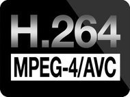 00be000003494140-photo-logo-h-264-mpeg-4-avc.jpg