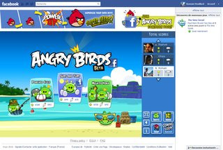 0140000004969262-photo-angry-birds-sur-facebook.jpg