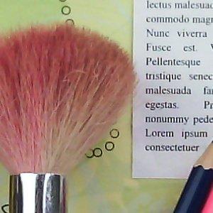 012c000007182864-photo-wiko-iggy-photo-scene-detail-2.jpg