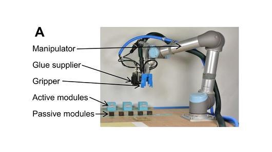 08138670-photo-robot-cambridge.jpg