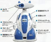 0000009600648202-photo-live-japon-robots-ubiko.jpg