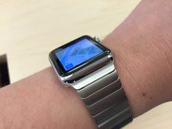 00FA000008018516-photo-apple-watch-bracelet-38.jpg